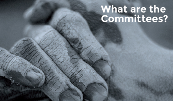 What Are the Committees? cover page